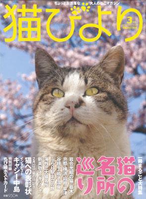 猫びより3月号